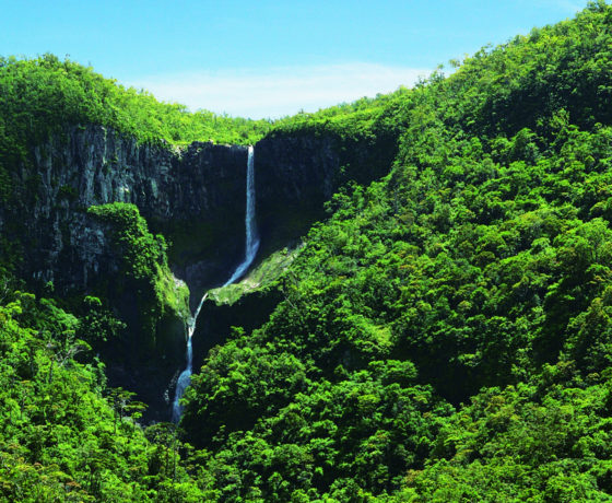 Mauritius Attractions - Heritage Nature Reserve